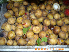 Popular Fruits
