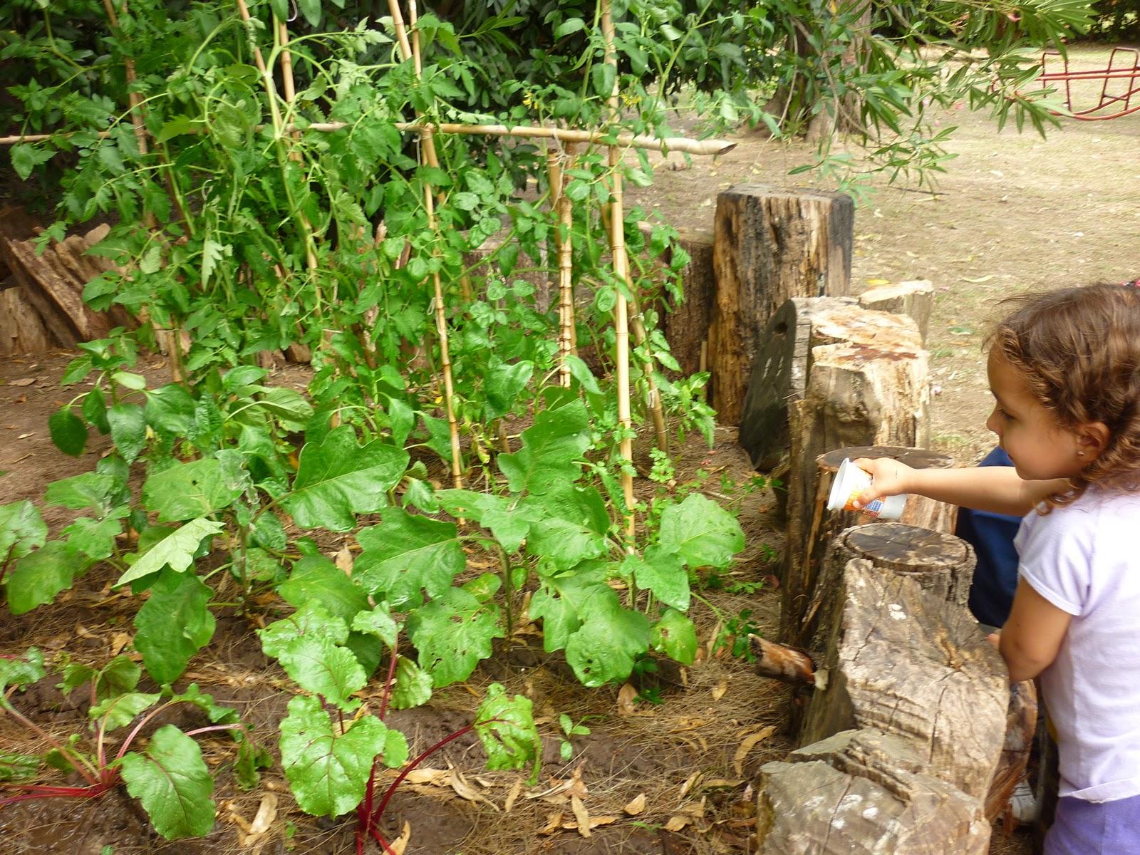 Jardin de infantes nuevo continente m s fotos prometidas for Azul naranja jardin de infantes