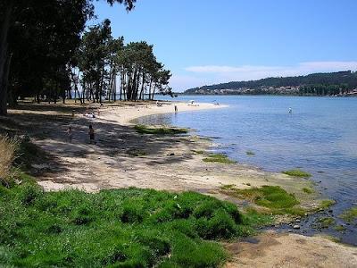 playa-isla-de-la-toja-galicia-espana.jpg