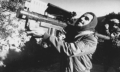 conflit Maroc vs espagne possible ? - Page 31 Terrorist+stinger