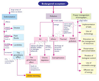 folio biologi endanger of ecosystem This post is the list of peka experiments for spm biology form 4 from berry berry easy – chapter 8: endangered ecosystem.