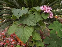 escuela de jardineria libro de jardineria material de jardineria