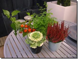 cursos paisajismo centros jardineria centros de jardineria