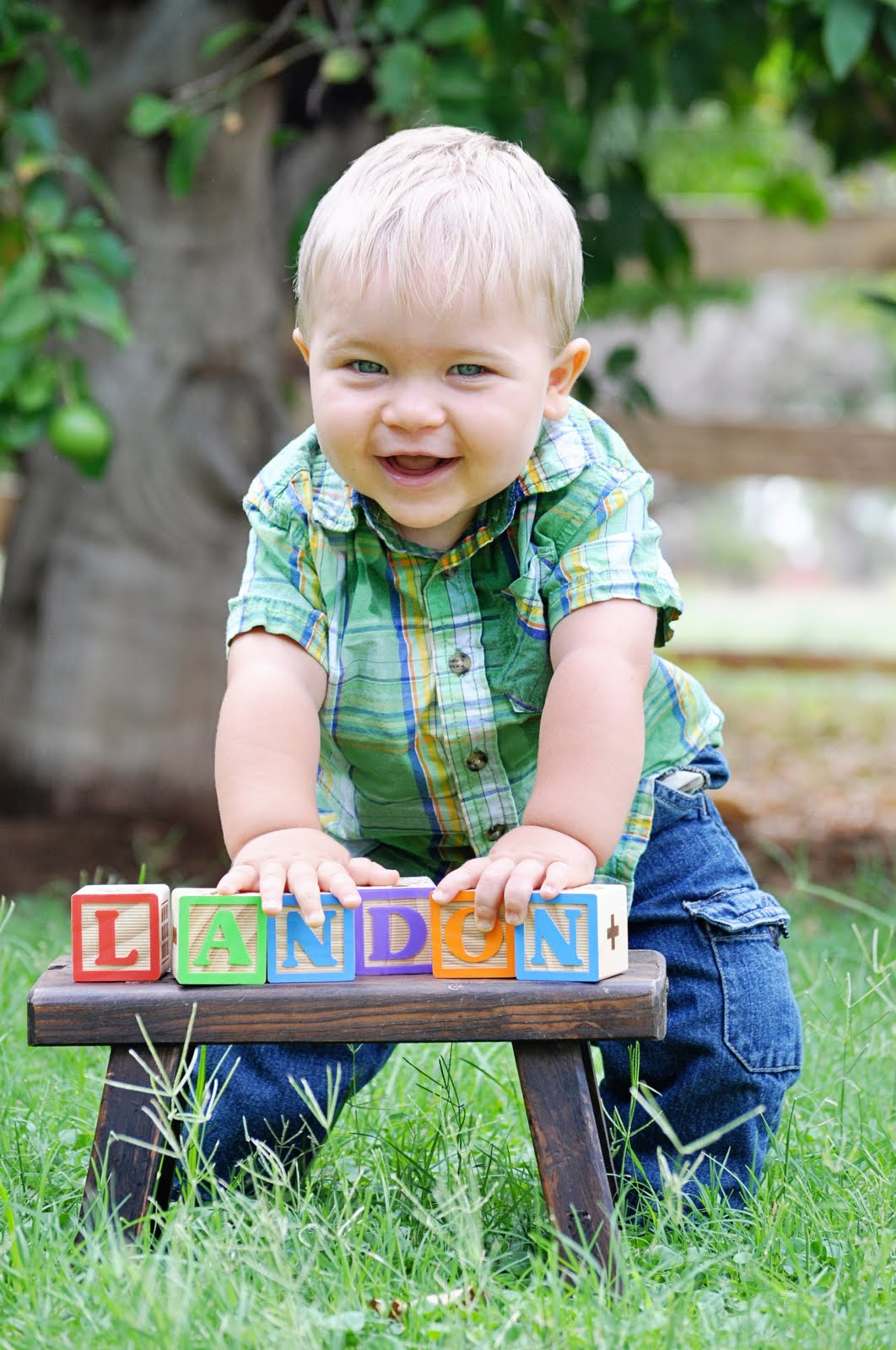 Year old session 125 photo shoot of your birthday boy girl bring