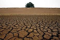 Não seja como a terra seca, tenha seus frutos e os mantenha no caminho certo