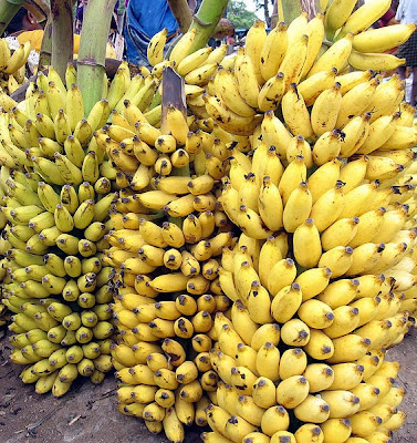 http://4.bp.blogspot.com/_DtTZ6HvuN9Y/S_QFYt9L1yI/AAAAAAAAAaA/7U2bqNVr4Qc/s1600/bananas.jpg