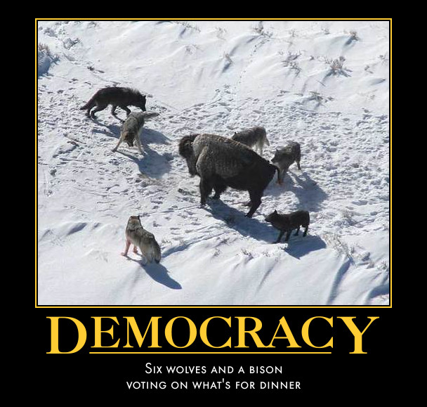 Democracy - It's what's for dinner