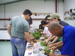 + Educação Ambiental..