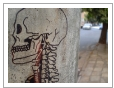 [Anatomical+Street+Art+at+Street+Anatomy_12052830406401]