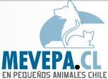 Sociedad de médicos veterinarios especialistas en pequeños animalesChile