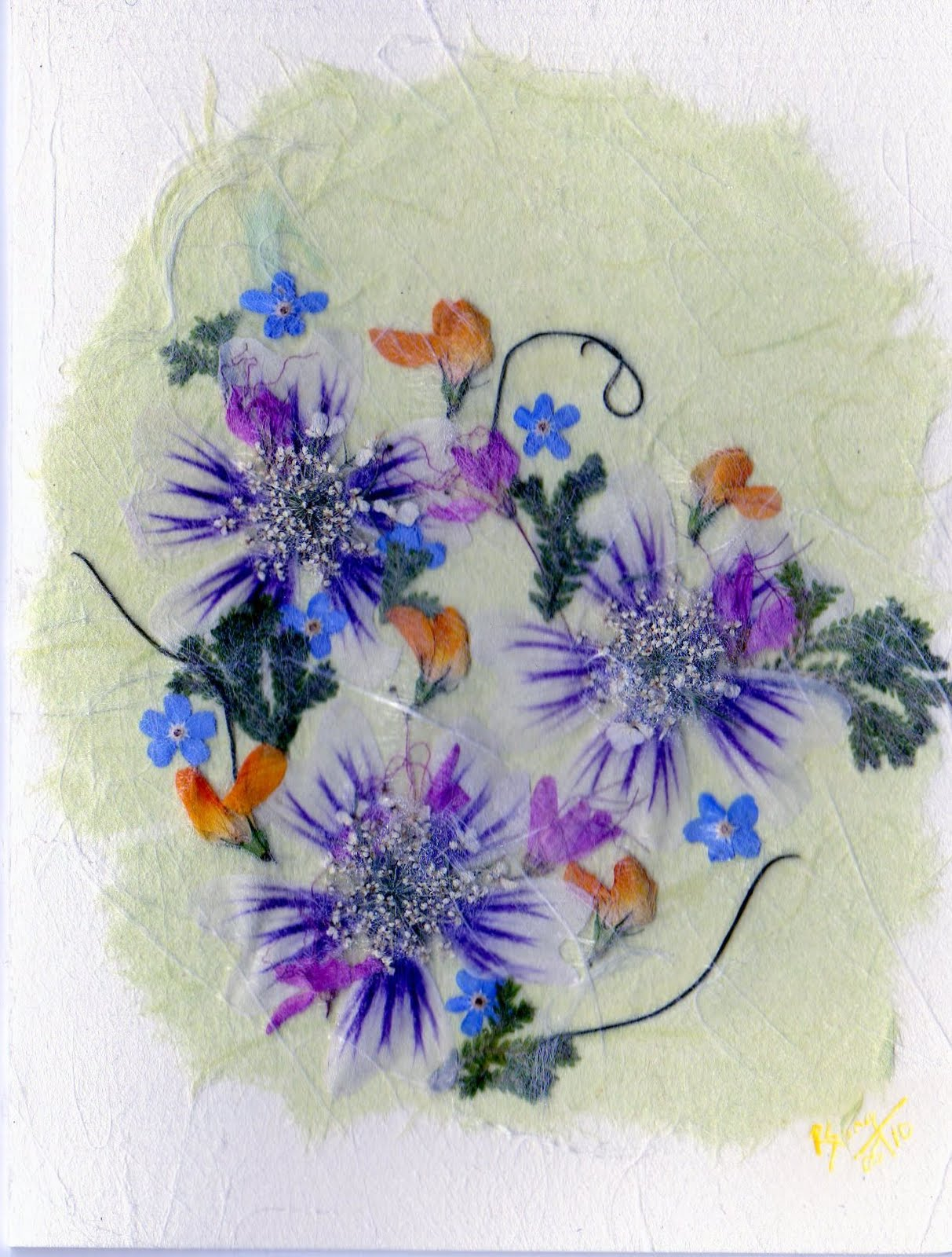 Ruth Song Pressed Flower Cards Enhenced With Tissue And Paper Punch
