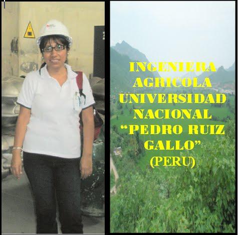 GLORIA SOLEDAD AGUILAR RIVERA