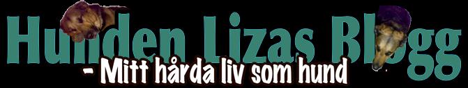 Hunden Liza