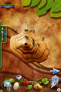 pocket ants app