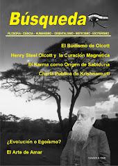 Revista No. 13