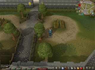 RuneScape is a Java-based MMORPG with some degree of 3D rendering and takes place in the fantasy-themed realm of Gielinor, which is divided into several different kingdoms, regions, and cities.Players can travel throughout Gielinor on foot, by using magical teleportation spells and devices, or mechanical means of transportation. Runescape also has over 136 million accounts created.
