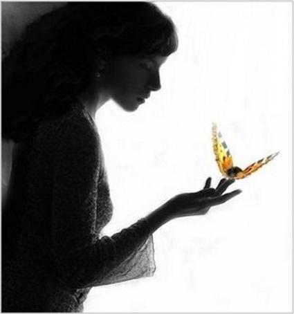 Image result for mariposas ligeras