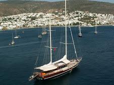 Blue voyage..Bon voyage..:)