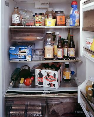 mark-menjivar-fridge