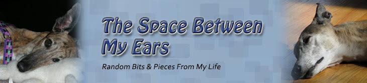 The Space Between My Ears