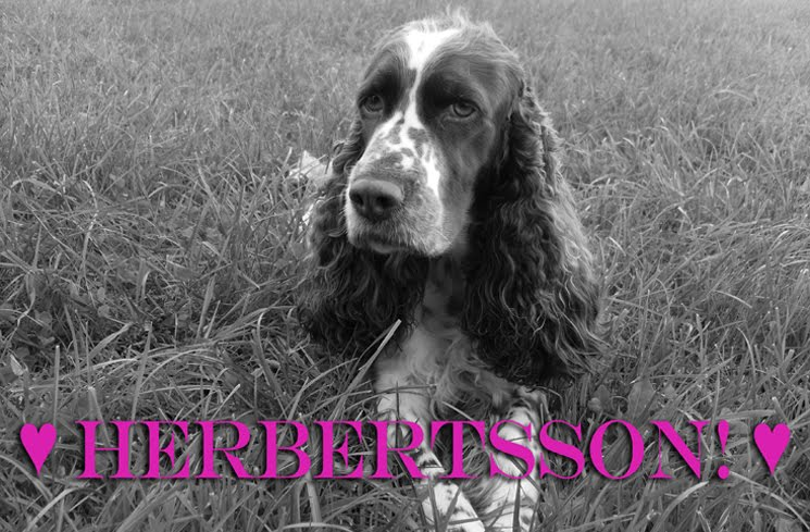 Herbertsson