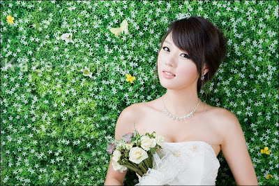 Bridesmaid Dresses Michigan on Wedding Dresses 2009   Hwang Mi Hee             In Wedding Dress  2