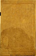 La piedra del COE.