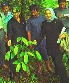 Bunda Marissa Haque Saat Kunker DPR RI Hutan Sumbar, 2006