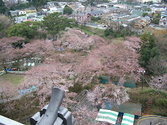 View from thr top of Odawara Castle