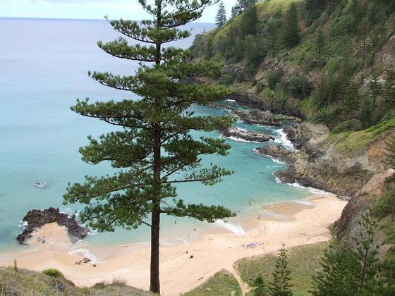Norfolk Islanders Resettled At New Norfolk