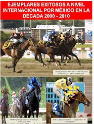 Ejemplares exitosos a nivel internacional por México 2000 - 2010