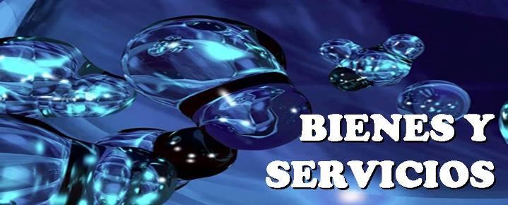 BIENES Y SERVICIOS
