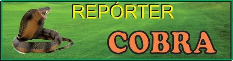 Reporter Cobra