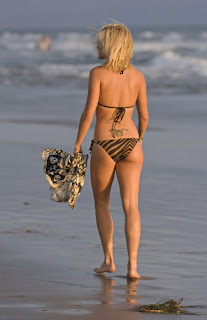 Ashley Roberts Bikini photo In Malibu