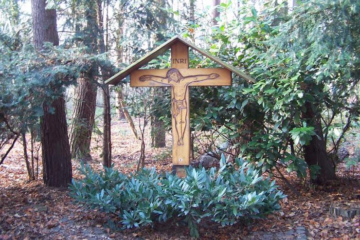 Risti metsässä