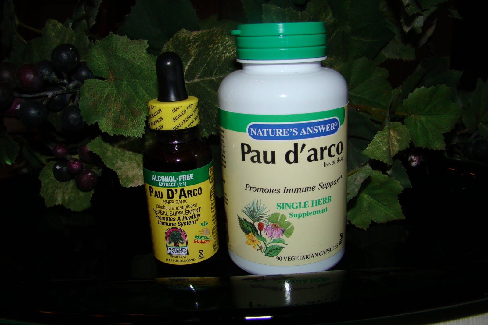 Candida probiotic herbal store buy - Herbs And Supplements That I Think Helped Rid My Body Of Candida How I Healed My Candida