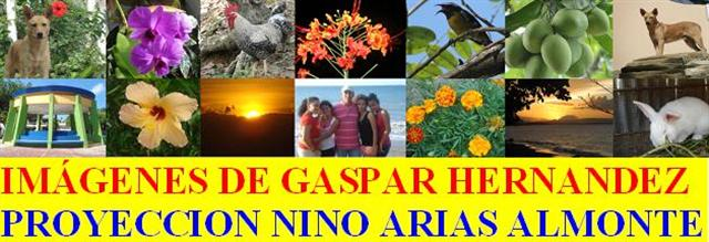 IMAGENES DE GASPAR HERNANDEZ