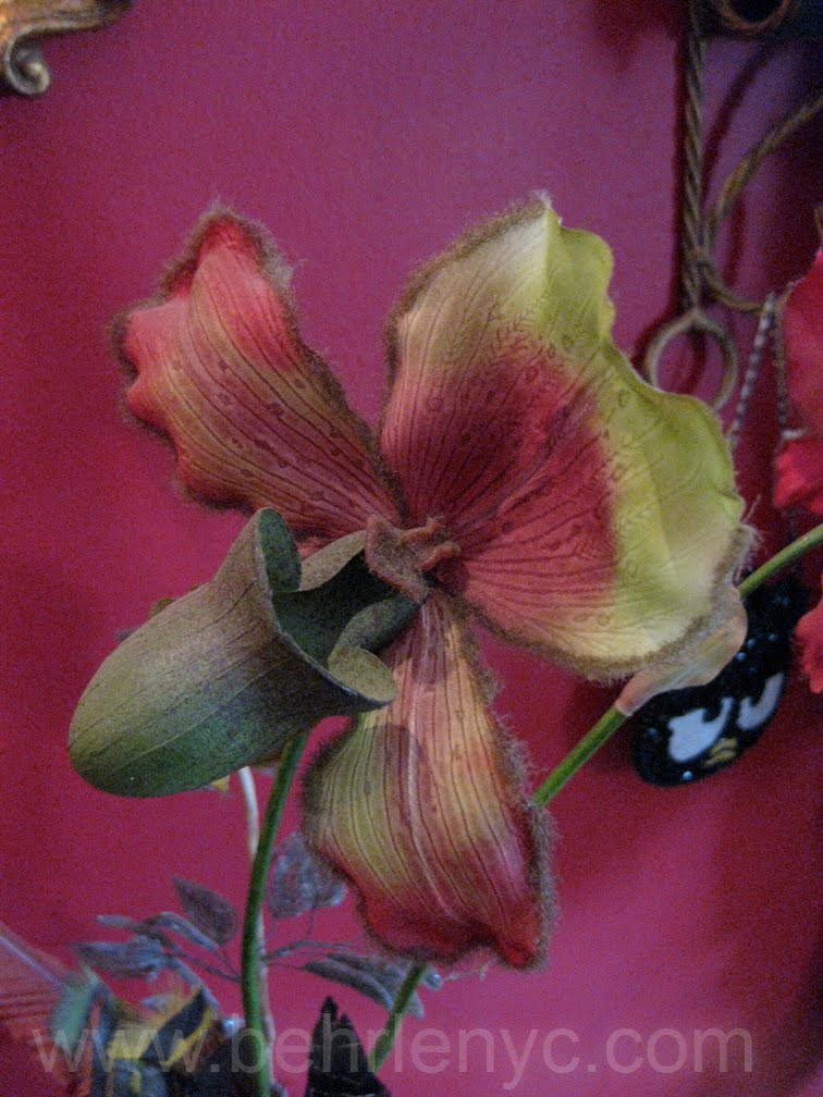 french-silk-orchid
