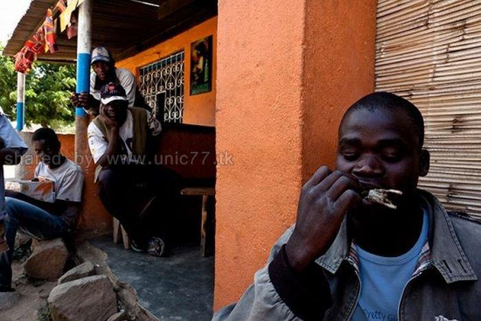 http://4.bp.blogspot.com/_EHi0bg7zYcQ/TL6bUpXZ-bI/AAAAAAAAPII/lJ-_-34f-V0/s1600/rat_catchers_09.jpg
