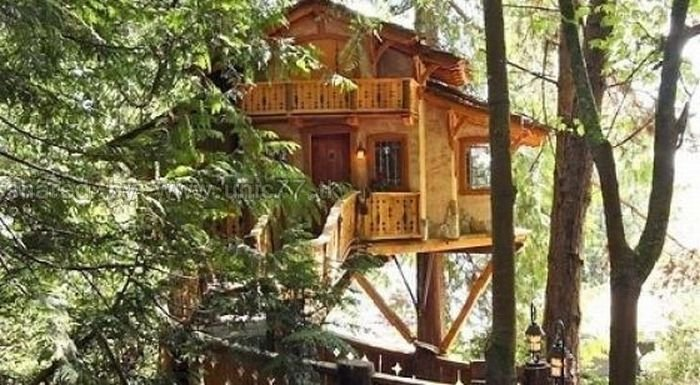 http://4.bp.blogspot.com/_EHi0bg7zYcQ/TLbCHBizlvI/AAAAAAAANPc/0NwyOBbwfRE/s1600/awesome_treehouses_10.jpg
