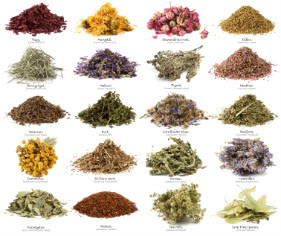 The Moon Called To My Soul....: Herbal and Plant Correspondences