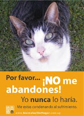 Animales sin hogar