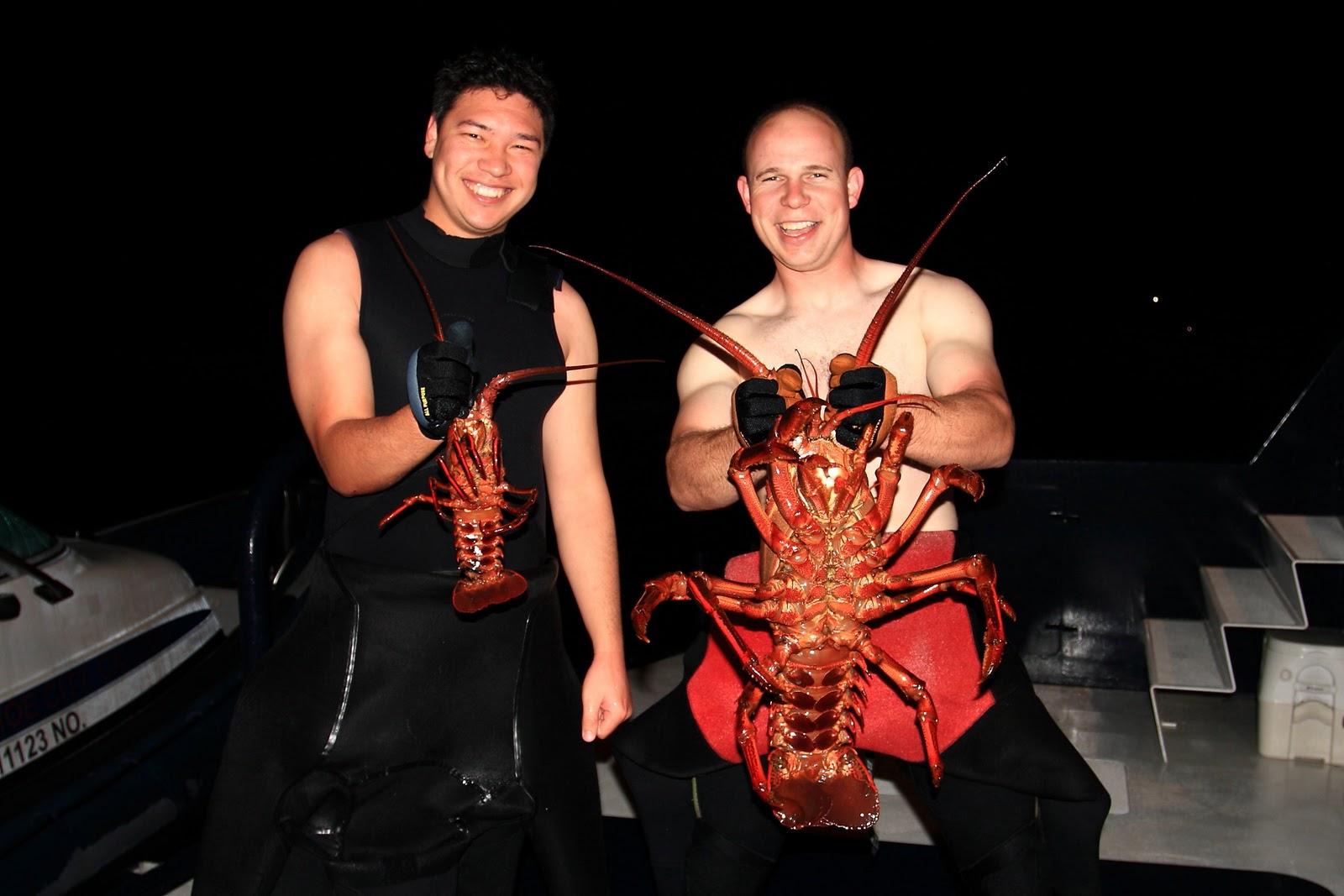 Bob Cacho's Photography Blog: Giant Lobster