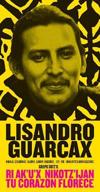 LISANDRO GUARCAX GONZÁLES