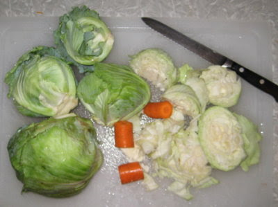 Chunked garden cabbage & boughten carrots