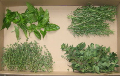 Homestead garden grown herbs