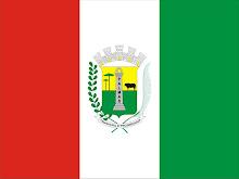 Bandeira do Município de Palmas-PR