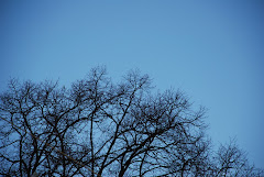 سماء صافية
