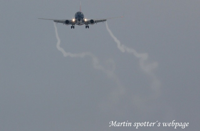 Martin spotters webpage