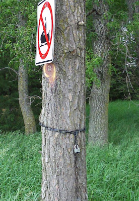 tree with lock and chain